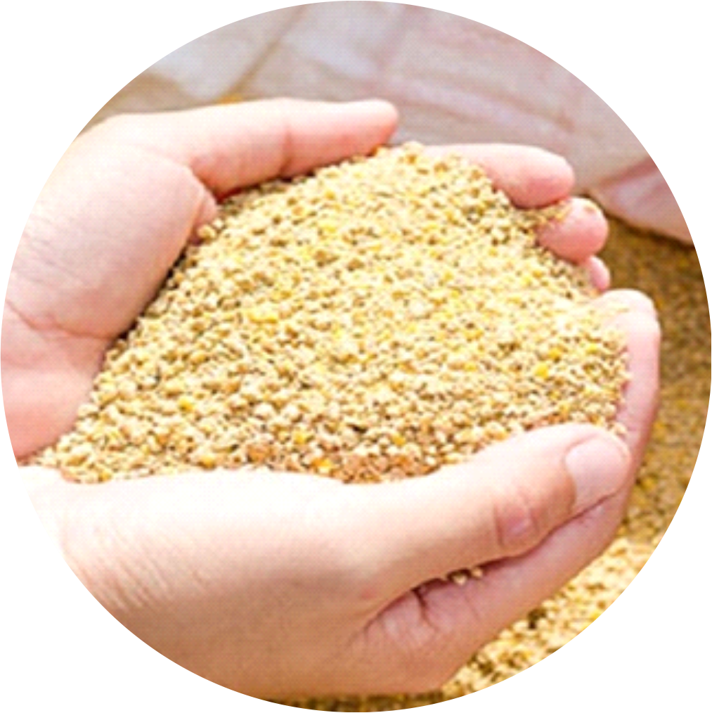 , Alimentos para fases de iniciación, Nutran